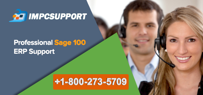 Professional Sage 100 ERP Support